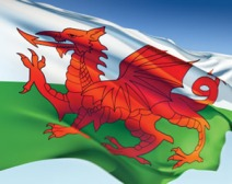 Welsh-flag-flying-high-300x239